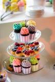杯形蛋糕和果子馅饼 免版税库存图片
