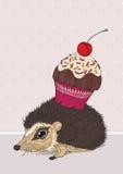 杯形蛋糕猬 免版税库存图片