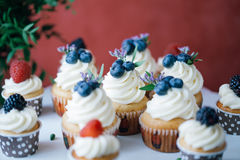 杯形蛋糕用在黑桌上的莓果 自创 宏指令 莓和蓝莓 没有染料的概念自然食物 免版税库存照片