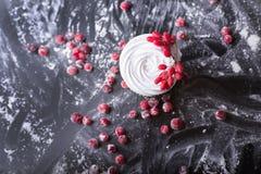 杯形蛋糕用红色莓果,在一黑暗的backgroun的蔓越桔 库存照片