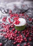 杯形蛋糕用红色莓果,在一黑暗的backgroun的蔓越桔 库存图片