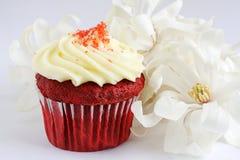 杯形蛋糕红色天鹅绒 库存照片