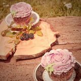 杯形蛋糕葡萄酒柔和的淡色彩口气 免版税库存照片
