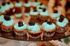 杯形蛋糕蒂凡尼颜色 免版税库存照片