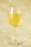 杯意大利白葡萄酒 库存照片
