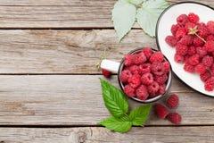 杯成熟莓 库存照片