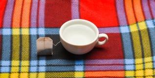 杯或白色瓷杯子有透明热水和袋子的茶 杯子用开水和茶袋填装了  库存照片