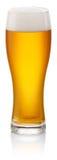 杯新鲜的啤酒 库存照片