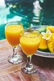 杯新鲜的热带圆滑的人或芒果汁 免版税库存图片