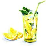 杯柠檬水用薄菏。水彩绘画 库存图片