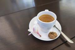 杯浓咖啡咖啡, Kopi Luwak巴厘岛,印度尼西亚 免版税图库摄影