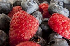 杯混杂的莓果 库存照片