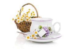杯清凉茶和狂放的camomiles 免版税库存照片
