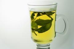 杯清凉茶 免版税库存图片