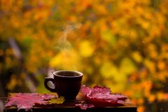 杯热的咖啡和红色在窗口离开 库存图片