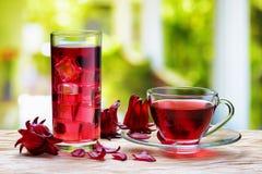 杯热的木槿茶(红色栗色)和同一份冷的饮料 免版税库存图片