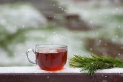 杯热的茶在一张木桌上的冬天公园 免版税库存图片