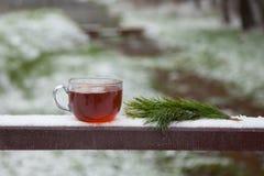 杯热的茶在一张木桌上的冬天公园 库存图片