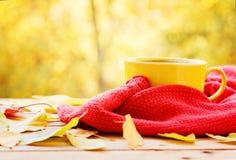 杯热的茶或咖啡在自然背景 概念秋天心情 免版税库存图片