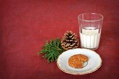 杯牛奶和曲奇饼圣诞老人的 免版税库存图片