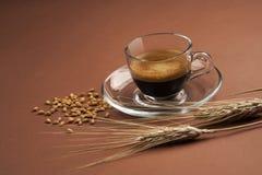 杯用咖啡大麦和耳朵 免版税库存图片