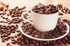 杯用咖啡豆 免版税库存图片