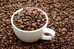杯用在咖啡豆背景的咖啡粒 库存图片