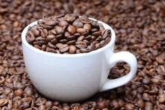 杯用在咖啡豆背景的咖啡粒 库存照片