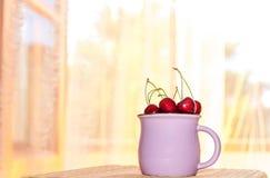 杯用在早晨窗口背景的一棵樱桃 免版税图库摄影