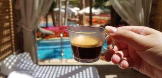 杯用无奶咖啡在女性手上反对从豪华酒店房间的一个看法 库存照片