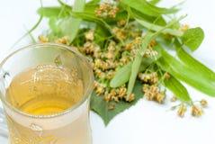 杯用菩提树茶和菩提树在白色同种疗法失眠补救概念开花 库存照片