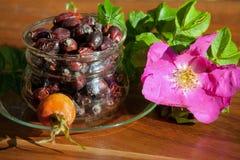 杯用dogrose莓果  健康d的准备的概念 库存图片