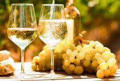 杯白葡萄酒成熟葡萄和面包在桌上在葡萄园里 库存照片