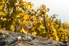 杯白葡萄酒有葡萄园背景在秋天 Lavaux,瑞士 免版税库存照片