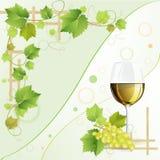 杯白葡萄酒 库存照片