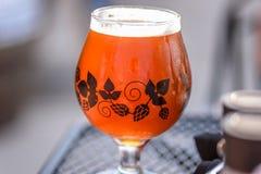 杯的特写镜头啤酒外面在一个晴天 库存照片