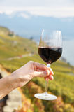杯红葡萄酒 免版税库存图片