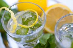 杯苏打水用薄菏和柠檬 免版税库存照片