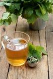 杯蜜蜂花茶 免版税库存图片