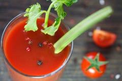 杯西红柿汁用西红柿 库存图片