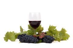 杯酒和葡萄在白色 免版税图库摄影