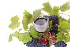 杯酒和葡萄在白色 免版税库存图片