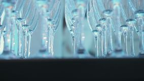 杯香槟在桌上 股票视频