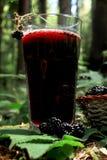 杯黑莓汁 库存照片