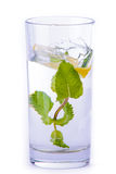 杯水用柠檬和薄菏 免版税库存照片