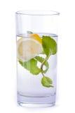 杯水用柠檬和薄菏 库存照片