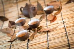 杯绿茶和干燥叶子 免版税库存照片