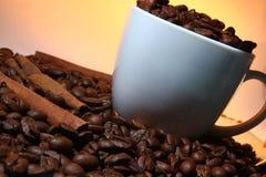 杯cofee用在棕色颜色的桂香 免版税库存图片
