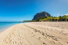 松弛假日在热带天堂 毛里求斯海岛 图库摄影