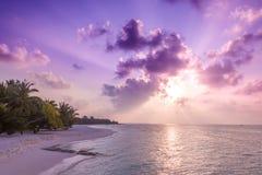 松弛和风平浪静视图和海滩场面 打开海洋水和日落天空和棕榈树 平静的自然背景 免版税图库摄影